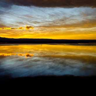 Laguna Chaxsa - Atacama Salt-Flat